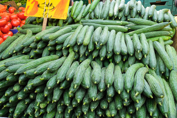 Fresh cucumber for sale at a market