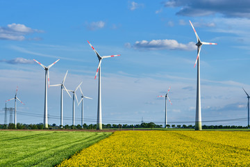 Thriving rapeseed field with wind turbines and power lines seen in Germany