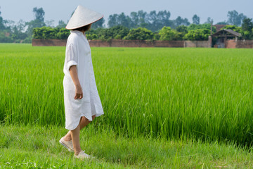 Women are walking in the beautiful rice terrace field at SA PA is the famous place and travel destination located in Sa Pa Hoang Lien Son mountain range, Lao Cai Province, Vietnam