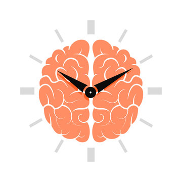Brain with clock. The Circadian rhythm concept.
