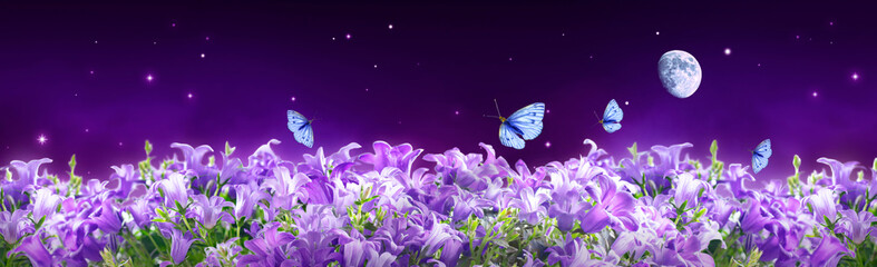 Fairytale fantasy background of magical purple dark night sky with shining stars, moon, bluebells campanula flowers garden and flying blue butterflies. Photo of moon is taken by me with my camera.