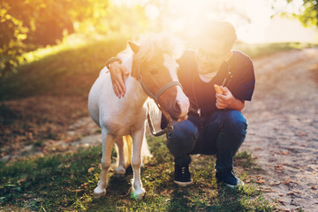 Young attractive male veterinarian examining and feeding adorable little pony horse.