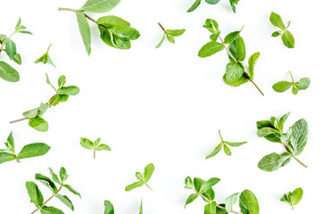 Frame from мint branchs and leaves isolated on white background. Set of peppermint. Mint Pattern. Flat lay. Top view.