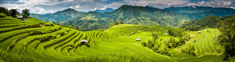 Garden Poster Rice fields Landscape panorama of Vietnam, terraced rice fields of Hoang Su Phi district, Ha Giang province. Spectacular rice fields. Stitched panorama shot.