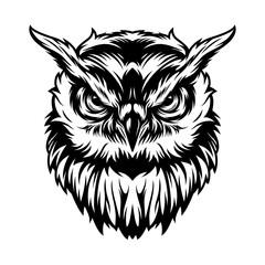 Vintage serious owl head concept