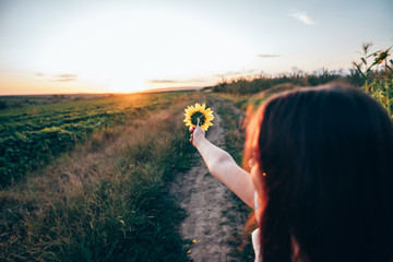 Close up portrait of young girl with brunette loose hair that pointing hand with sunflower into the distance, sunset on the background Fototapete