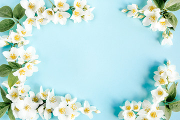 Frame of jasmine flowers, petals, leaves on blue background. Flat lay, top view