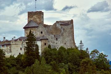NIedzice castle