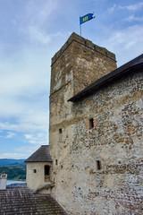 Niedzia castle