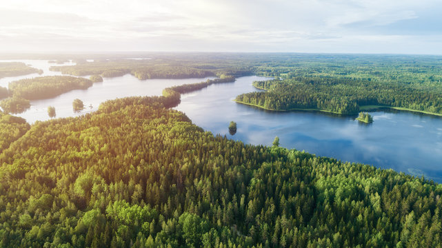 Lake system surrounded with green forest in Finland, aerial landscape. Nature exploration concept.