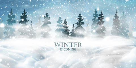 Fotomurales - Winter is coming. Christmas, night, Snowy Woodland landscape. Holiday winter landscape for Merry Christmas with firs, coniferous forest, light, snow, snowflakes. Christmas scene. Happy new year.