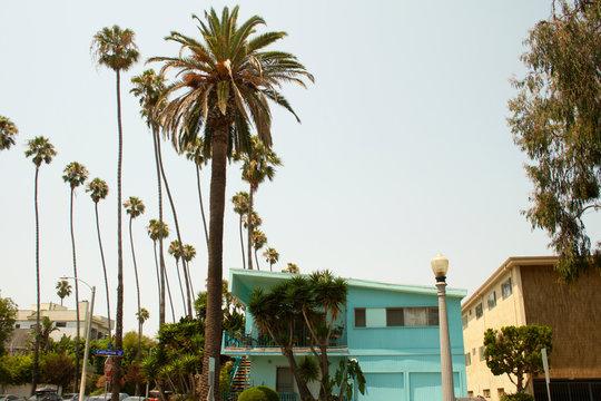 California Los Angeles Santa Monica Tropical House Palm Trees