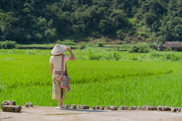 Women standing and looking at the beautiful green rice paddy fields with feeling relaxed
