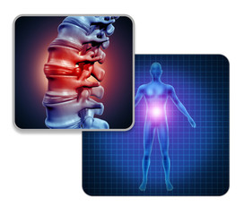 Human Back Joint Pain