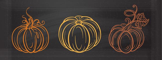 Autumn vector illustration. Graphic pumpkins set on a chalkboard background.