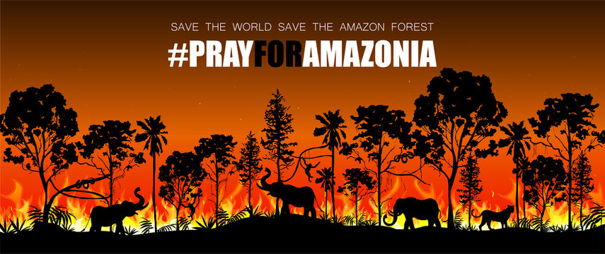 Problems forest fire burn in Brazil, Australia, and Amazon. Forest fires with wild animals silhouette. Vector illustration.