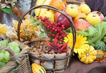 herbstliche Dekoration - Korb mit haselnüssen, Äpfel, Quitten, Kürbisse, Trauben, Vogelbeeren