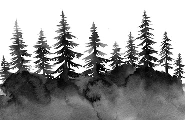 black gloomy forest, spruce watercolor, background