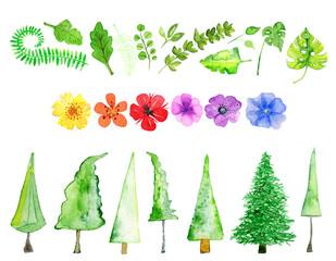 Bäume, Blüten, Pflanzen in Aquarell