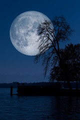 Full moon with tree lake reflections