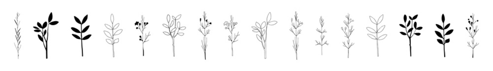 Set of hand drawn herbs. Contour and silhouette. Collection, assortment, pack of floral vector elements isolated on white. Black and white. Decorations for greeting cards, invitations, tea packaging