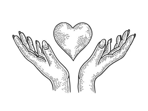 Hands and heart symbol Blood donation sketch engraving vector illustration. Tee shirt apparel print design. Scratch board style imitation. Black and white hand drawn image.