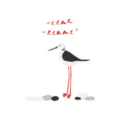 Black-winged stilt vector hand drawn illustration. Sea bird among the stones and inscription Krak isolated clipart.