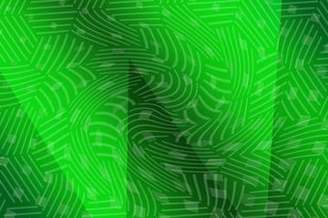 Foto op Canvas Tropische Bladeren web, spider, dew, nature, cobweb, water, spiderweb, drops, morning, insect, net, macro, pattern, drop, spider web, closeup, wet, design, close-up, green, network, abstract, trap, mist, silk