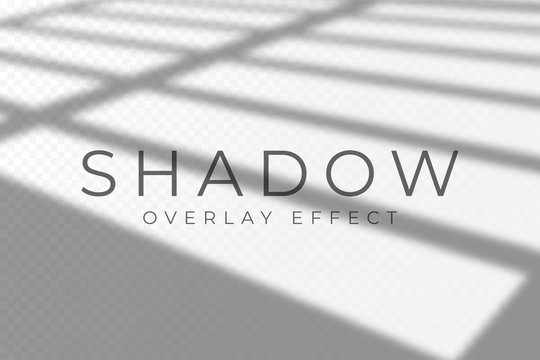 Shadow overlay effect. Transparent soft light and shadows from windows and jalouse. Mockup of transparent shadow overlay effect and natural lightning