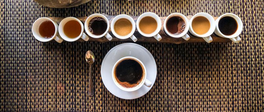 Luwak Coffee & Tea testing, Bali