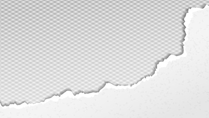 Piece of torn white paper with soft shadow is on grey squared background. Vector template illustration Wall mural