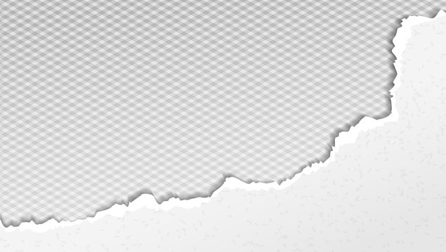 Piece of torn white paper with soft shadow is on grey squared background. Vector template illustration