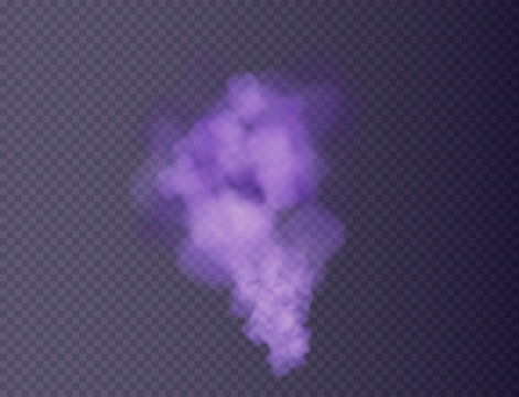 purple fog or smoke isolated, transparent special effect. Colorful steam and cigarette realistic smoke. Bright vector cloudiness, mist or smog background. Vector illustration