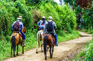 View on people doing horse trekking in Colombia