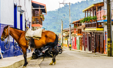 View on horse in the colonial village of Jardin in Colombia