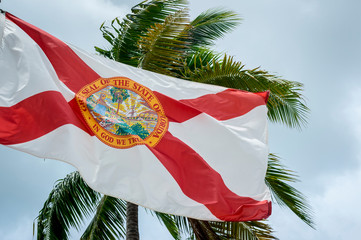 The flag of Florida blowing against palm trees in soft gray sky
