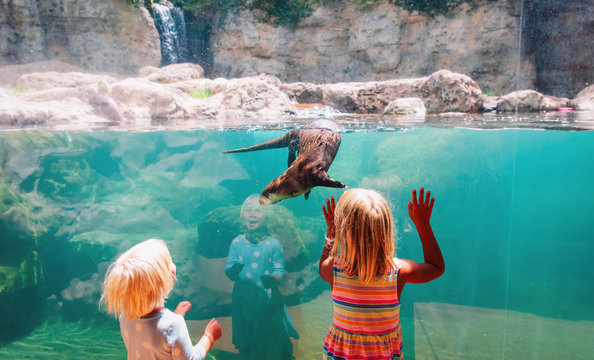 kids-two girls- looking at otter in large aquarium