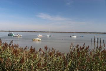 Naturidyll Loire Mündung bei Saint Nazaire