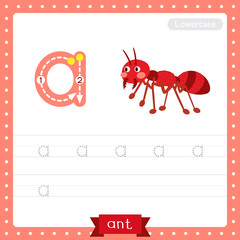 Letter A lowercase tracing practice worksheet. fire ant