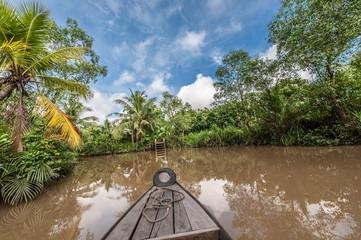 Voyage en barque dans un arroyo dans le Delta du Mékong, Cai Be, Vietnam