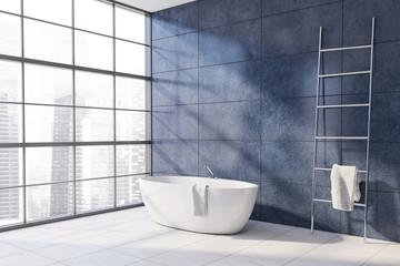 Blue bathroom corner with tub and ladder