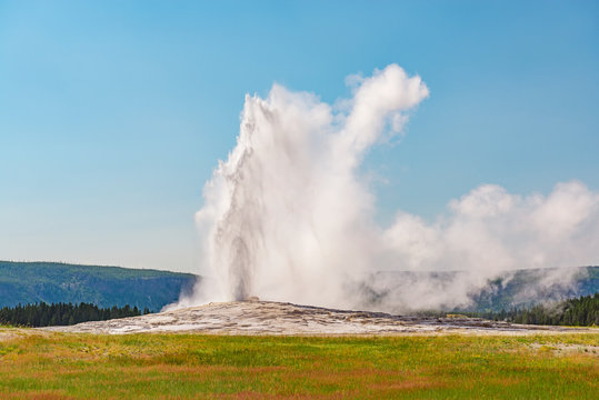 The Old Faithful geyser having an eruption on a bright summer day, Yellowstone National Park, Wyoming, USA.