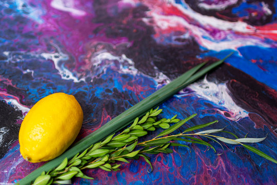Symbols of jewish fall festival of Sukkot, lulav - etrog, palm branch, myrtle and willow