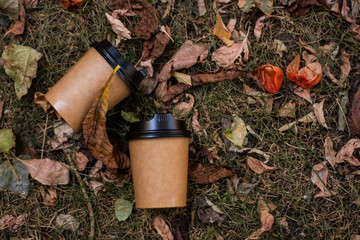 Among the yellowish autumn leafs lie kraft, paper, eco-friendly cups for coffee to go. Morning drink.