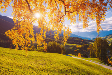 Magic image of sunny hills in Santa Magdalena village. Funes valley, Dolomite Alps.