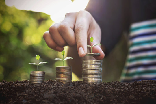 Hand giving a coin to a tree growing from pile In coin Money. Financial accounting, Investment Concept.
