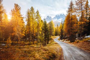 壁紙(ウォールミューラル) - Scenic image of the alpine road. Location National Park Tre Cime di Lavaredo, Dolomiti alps, Italy, Europe.