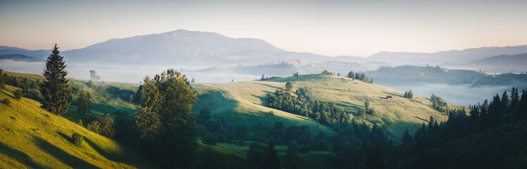 Wall Mural - Awesome alpine highlands in sunny day. Location Carpathian national park, Ukraine, Europe.
