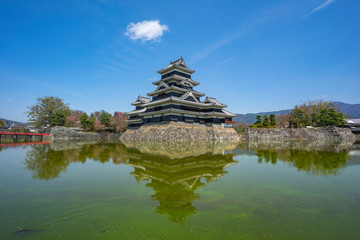 Wall Mural - Matsumoto Castle with canal in Nagano, Japan