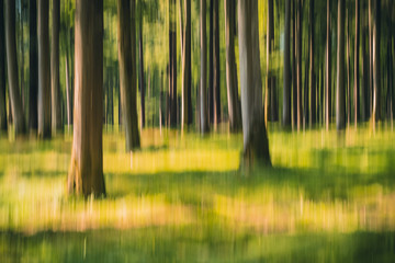 Intentional camera movement ICM photo of a green forest on a sunny summer day. Blurred nature background concept